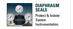 Diaphragm Seals, Protect & Isolate System Instrumentation